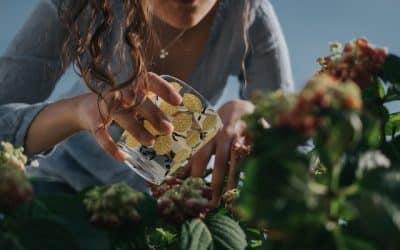 Кои са най-честите вредители по растенията и как да се справим с тях