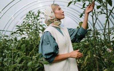 Как да предпазим растенията си от лоши атмосферни условия?