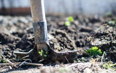 Каквиса предимствата на мрежите за селско стопанство?